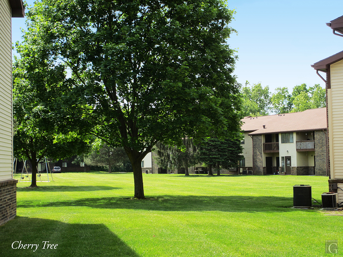 Cherry Tree Apartments Hillsdale Mi